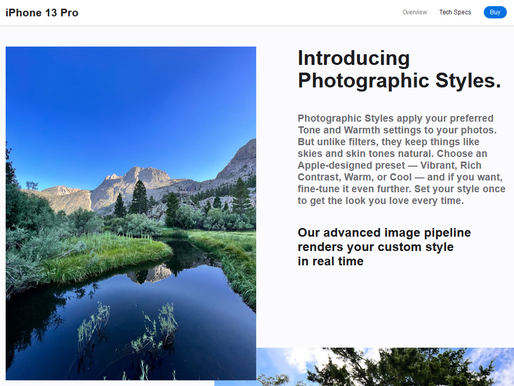 """iPhone 13 Pro's website screenshot, in the """"Photographic Styles"""" section"""